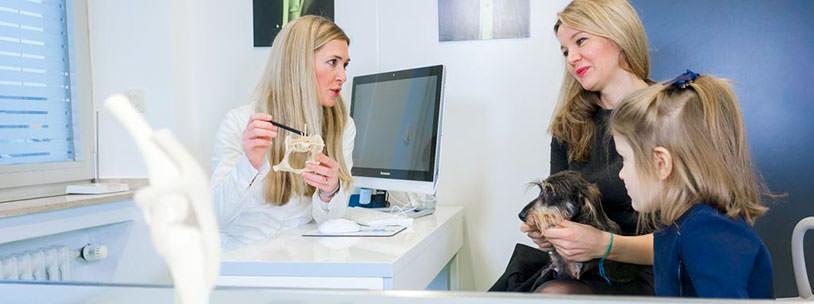 Tierarztpraxis Besserer: Orthopädische Sprechstunde